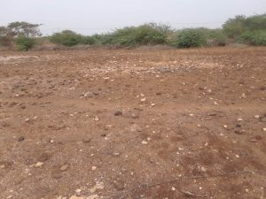 land looking north of morro on maio in cape verde for sale